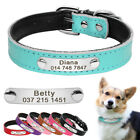 Personalized Dog Collar Leather Pet ID Collar Name Engraved Free for Dogs XS S M