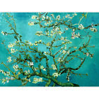 Vincent Willem Van Gogh HD Canvas Combinations Painted Oil Printed Wall Decor   <br/> Not Hand Painting /Printed Paintings