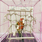 Parrot Climbing Net Bird Cage Wood Ladder Toy Play Gym Hanging Swing Net