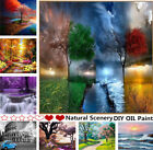 Внешний вид - DIY Paint By Number Kit Digital Oil Painting Art Natural Scenery Wall Home Decor
