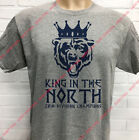 CHICAGO BEARS NFC NORTH ***KING IN THE NORTH*** CHAMPIONSHIP T-SHIRT