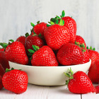 Strawberry 'Cambridge Favourite' Hardy Mid Season Bare Root Garden Fruit Plants