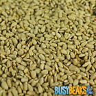 BusyBeaks Sunflower Hearts - Kernels Bird Seed Bakery Grade Food for Wild Birds