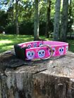 Pink Sugar Skulls Dog Collar With Black or Pink Webbing