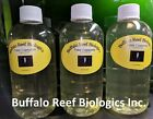 Pod Soup - Tigriopus and Tisbe mix -- Buffalo Reef Biologics pods