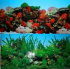 "Внешний вид - Coral Reef Fish Tank Background Water Plants Ocean Lake Aquarium 12"" 24"" 48"" 72"""