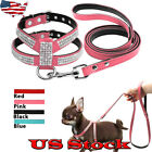 Small Dog Harness Leash Suede Leather Rhinestone Pet Harnesses And Walking Leads