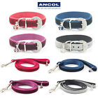 Ancol Luxury Crown Jewel Velvet Collar or Lead Small Bite Puppy Small Dog