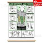 GYM WORKOUT POSTER ALL BODY Exercise Tricep Bicep And More | A4 A3 A2 A1 |