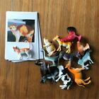 Montessori Animal Matched Toy Preschool Education Toys Toddler 4-8 Years Old