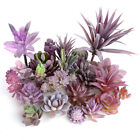 Mini Artificial Purple Succulents Flower Diy Floral Plant Wall Home Decor Potted