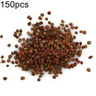 150Pcs Mixed Color Nutritious Radish Seeds Easy Grow Vegetable Plant Spirited