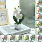 Artificial Fake Flower Plastic Plant Decoration Home Outdoor Garden Decoration