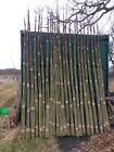 Living willow whips (trees) Salix viminalis - hedges, windbreaks/structures