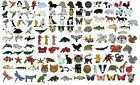 Farm Animals Dogs Cats Birds Dolphin Whales Fish Dinosaur Wildlife Insect Badges