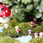 Mini Mushroom Miniaturen Set Fairy Garden Rasenterrarium N9w3 F4c6