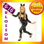 9129 Catwoman Superhero & Villain Ladies Fancy Costume
