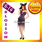 B1 Ladies Purple Halloween Witch Corset Fancy Dress Up Costume Outfit + Hat