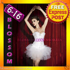 CC16 White Swan Vegas Showgirl Burlesque Bridal Corset Tutu Moulin Rouge Costume