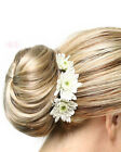 Elegance - easiHair Braided Bun UpDo Formal Wedding Prom Hairpiece
