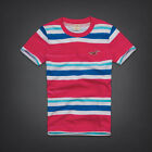 NWT HOLLISTER Men Muscle Slim Fit T Shirt Tee By Abercrombie