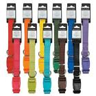 NYLON DOG COLLAR, 11 Colors 4 Sizes! Zack & Zoey, Durable! Puppy