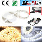 5m LED Strip Flexible Waterproof Warm White/White 3528 SMD light+2A Power Supply