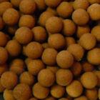 Brown CPX Flavoured Pop up Boilies for Carp Coarse Fishing Universal Accessories