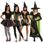 WOMENS WITCH HALLOWEEN FANCY DRESS  COSTUMES