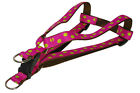 Sassy Dog Wear Adjustable Dot-Fuchsia/Lime Dog Harness