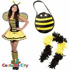 Ladies Beautiful Bumble Bee Fancy Dress Costume Hen Party + Accessories PA