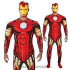 C962RB Iron Man AA Deluxe Superhero Hero Mens Halloween Adult Party Costume