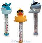 Swimming Pool & Spa Thermometer | Duck, Shark & Dolphin Characters