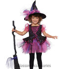 CK278 Darling Little Witch Up Girls Toddler Kids Book Week Halloween Costume