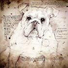 British Bulldog (Face): Giclee Print in Da Vinci style. In six formats sizes