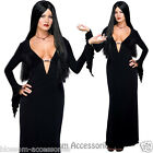 CL349 Secret Wishes Morticia Addams Family Costume Dress Halloween Witch Vampire