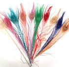 10 x DYED PEACOCK EYE FEATHERS  - millinery, art, craft, bird, dreamcatcher