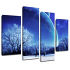 MSC052 Winter Forest Snow Close Canvas Wall Art Multi Panel Split Picture Print