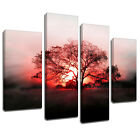 MSC426 Sunrise Over Meadow Tree Canvas Wall Art Multi Panel Split Picture Print