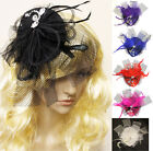 Flat Pillbox with Crystals Net Veil Feather Clip Fascinator Wedding Ascot Races