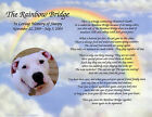 Personalized Pet Memorial Poem The Rainbow Bridge For Loss of Pet