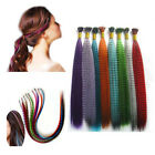 Hot 10pcs Grizzly Rainbow Feather Wigs Hair Extensions Cosplay New Multi-color