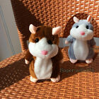2Color Lovely Talking Hamster Plush Toy Hot Cute Speak Talking Sound Record Toy