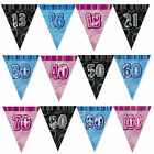 Glitz FLAG Banner - 9Ft Triangle Happy Birthday 13th-100th Party Decorations