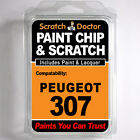 PEUGEOT 307 TOUCH UP PAINT Chip Scratch Car Repair Kit . Year 2007 - 2008