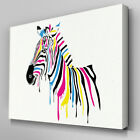 A211 Rainbow Wet Paint Zebra Canvas Art Ready to Hang Picture Print