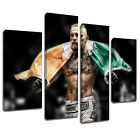 MS553 Conor McGregor Victorious KO UFC 189 Canvas Art Multi Frame Poster Print