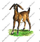 GOAT KID FARMING VINYL TRUCK CAR TRACTOR TRAILER WINDOW GLASS DECAL STICKER GIFT