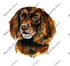 Boykin Spaniel South Carolina State Bird Dog Camp Auto Boat Vinyl Sticker Decal