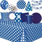 Blue and White Polka Dot Cone Party Hats   Favour 1-48pk